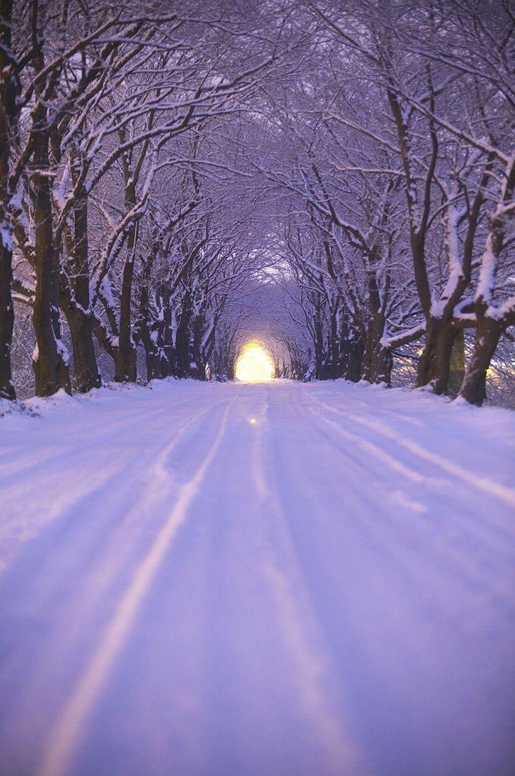 "Foto ""winter"" da TongRo Images Inc. #OGQ"