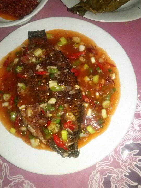 Spicy nila fish