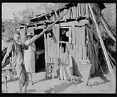from Rogue Turtle: the Great Depression Era forced some folks to make their own shelters