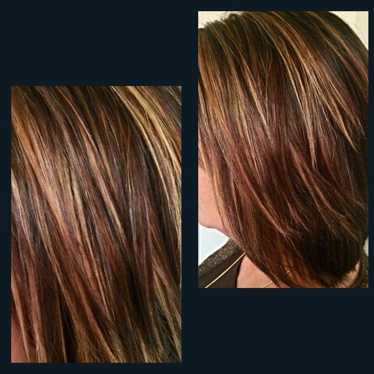 Goldwell Chestnut Browns With Golden Highlights