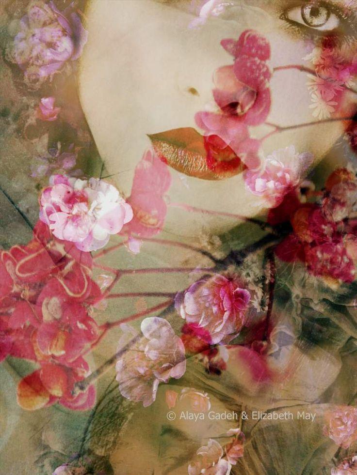 © Alaya Gadeh & Elizabeth May  prints exclusivley available at artistrising.com