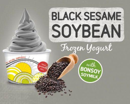 Black sesame soybean froyo