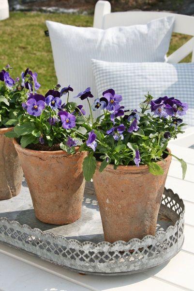 130 best Altankasser, krukker og andre plante-hjem images on ...