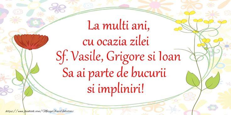 La multi ani, cu ocazia zilei Sf. Vasile, Grigore si Ioan Sa ai parte de bucurii si impliniri!