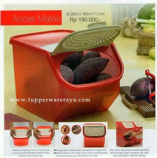 Promo Tupperware April 2014 - Access Mates