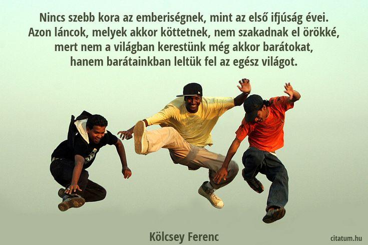 Kölcsey Ferenc gondolata a régi barátságokról.