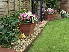 Dog-Friendly Landscaping including good and bad plants, mulches, etc