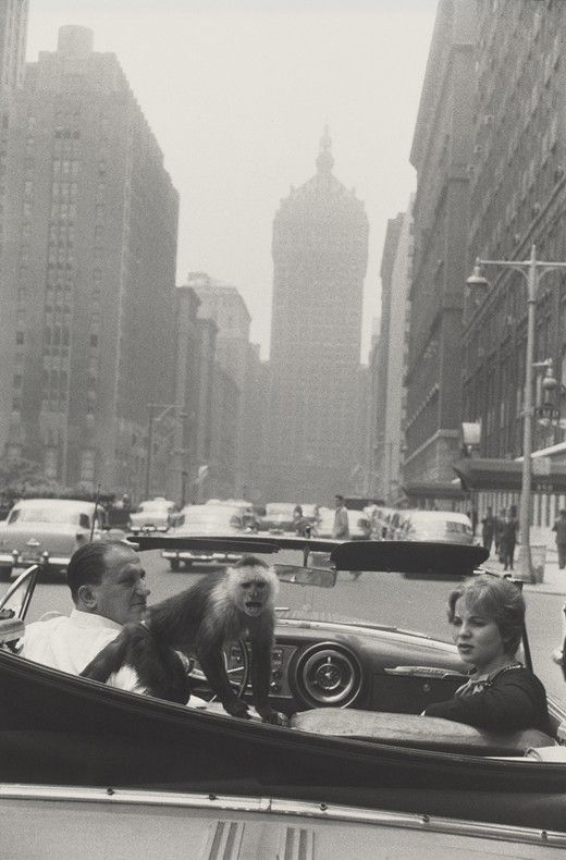 Garry Winogrand, Park Avenue, New York, 1959 © The Estate of Garry Winogrand, courtesy Fraenkel Gallery, San Francisco