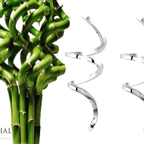 #inspiration Lucky Bamboo brings love, good health and wealth. Handcrafted Spiral earrings in 18ct Premium White Gold (yellow and rose gold also available). #mondialbynadia #designerearrings #designerjewellery