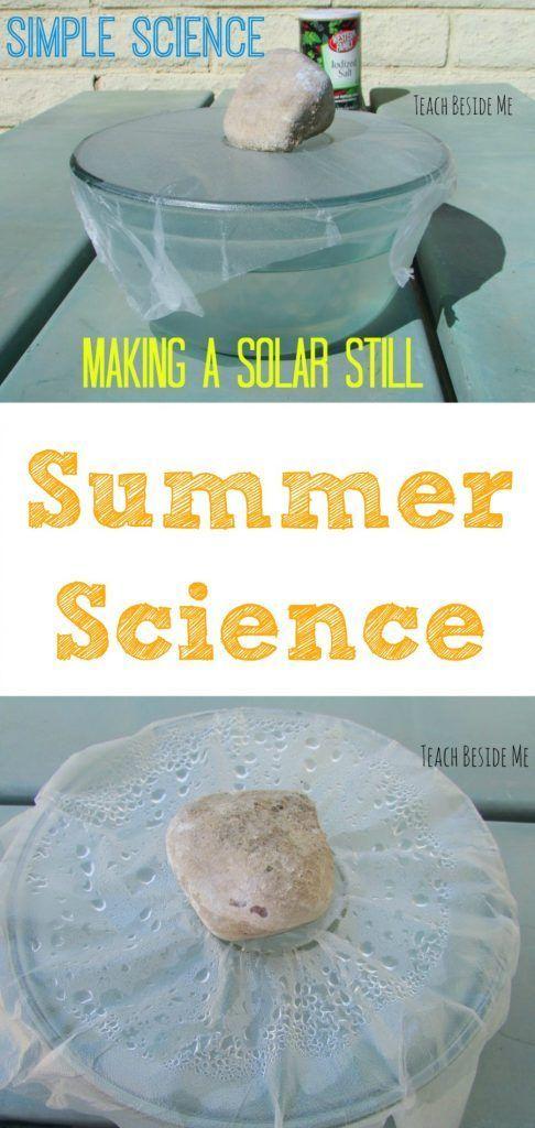 Summer Science- Making a Solar Still