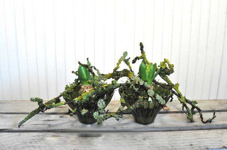 DIY: Hyacinter og grene i skåle - Maja Maagaard
