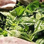 Pestosaus invriezen voor de winter - Koken met Trendy Recepten