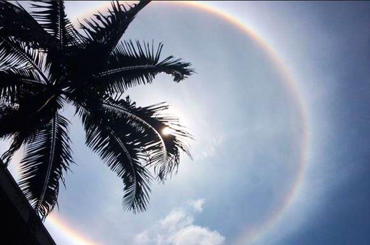 Halo solar, el fenómeno con el que el sol sorprendió a los caleños este martes