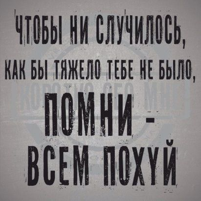 Алексий Уколов | Юморные цитаты, Юмористические цитаты ...
