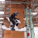 Video | Conoce a la innovadora moto-dron del futuro, la Scorpion-3 - RPP Noticias  RPP Noticias Video | Conoce a la innovadora moto-dron del futuro, la Scorpion-3 RPP Noticias La primera versión presentada en 2016 revelaba una cierta inestabilidad durante el vuelo horizontal. La nueva versión esta equipada con joysticks para facilitar el control. Redacción. 22 de febrero del 2017…