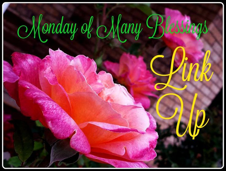 Monday of Many Blessings Link Up #4