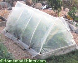 Building Our Small, Cheap Greenhouse – Simple PVC A-Frame with Polyethylene Plastic Cove