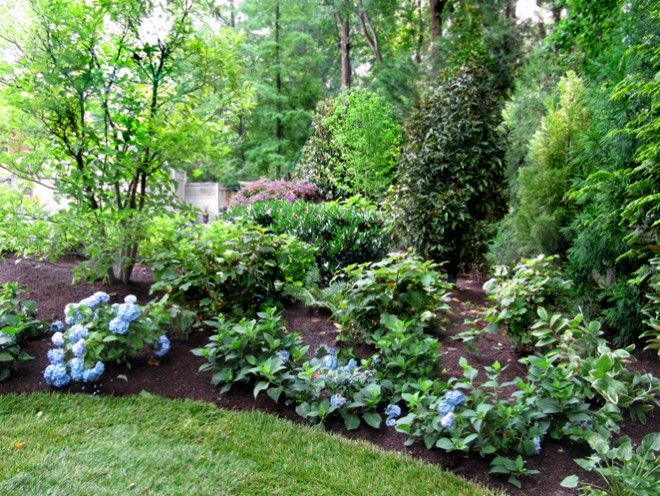 willow landscape design Sweeping Curves Circles Blue