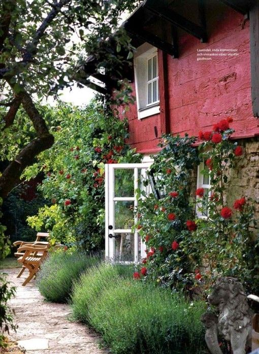 garden. Saturated color.: Country Cottages, Cottages Gardens, Red House, Red Wall, Gardens Design Ideas, Climbing Rose, Modern Gardens Design, Red Rose, Gardens Rose
