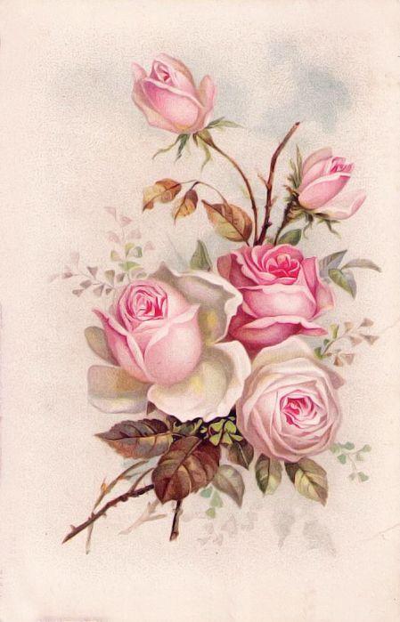 delicado ramo de rosas