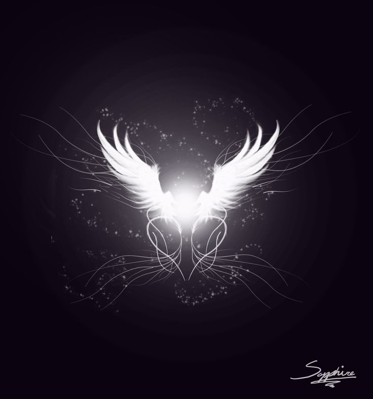 Image Detail for - Angel Wing Design by ~Dannys-angel on deviantART