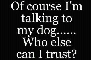 And my Shih Tzu understand and agree on every tihing