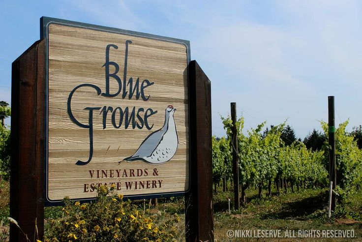 Blue Grouse Winery. Digital Photography. 2013.  © Nikki LeServe. Cloud Pancakes. All Rights Reserved.  cloudpancakes.com