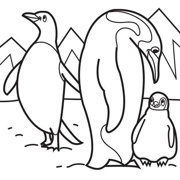 Arctic Animals Coloring Pages Penguin Coloring Pages Penguin Coloring Family Coloring Pages