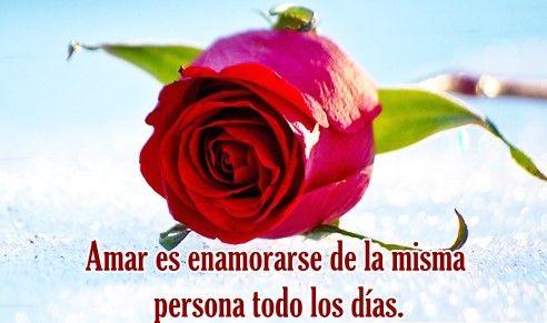 imagenes de rosas rojas con mensajes de amor