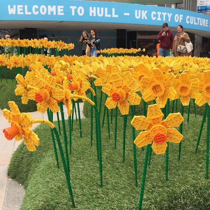 Only a couple seats left for April 18th's CQcertification training in London! Hurry you may be lucky ones! https://culturalq.com/products-services/certification/ The temporary installation is part of Hull's City of Culture 2017 event, a celebration highlighting the city's arts and culture.     The display in the East Yorkshire city's King Edward Square features 1,700 daffodils made from a whopping 146,400 Lego bricks.