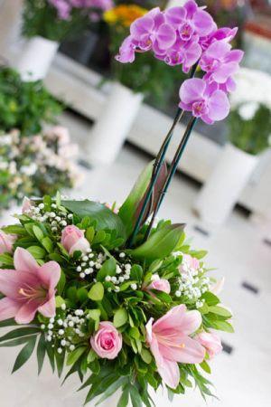 Σύνθεση λουλουδιών σε κασπώ με ορχιδέα φαλαίνοψις φυτό.Ένα μοναδικό δώρο για εσάς που θέλετε ξεχωρίσετε με τον καλύτερο τρόπο.