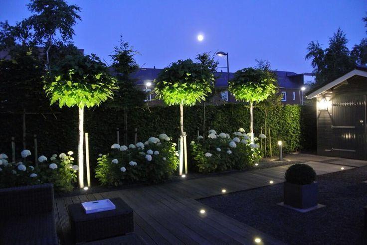 10 Best Garden Lighting Ideas For Exterior Lighting 2019 Tuin Ideeen Tuin Tuinverlichting Ideeen