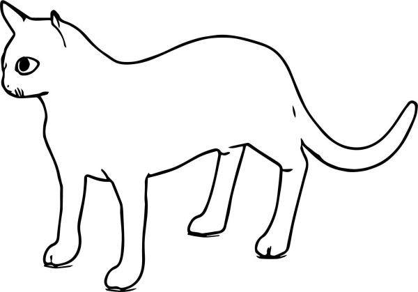 Paling Hits 30 Gambar Kucing Kartun Sederhana Di 2020 Dengan
