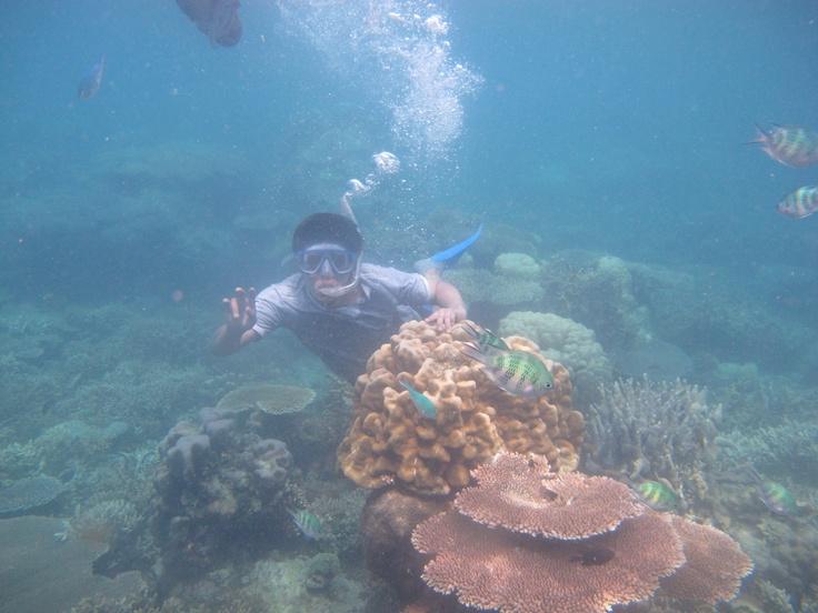 Snorkeling at karimun jawa