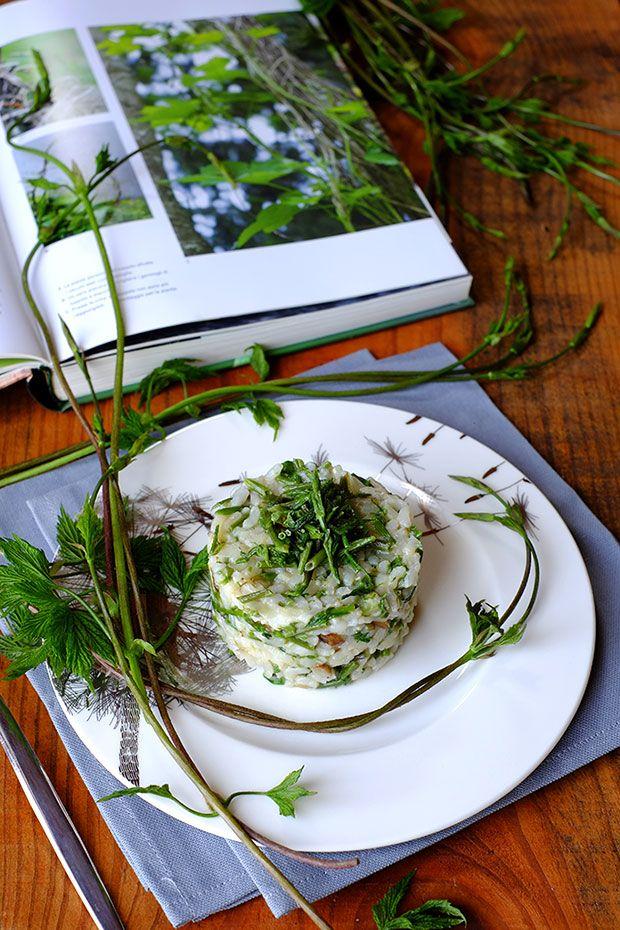 Risotto con luppolo selvatico e topinambur - GranoSalis - Blog di cucina naturale e consapevole