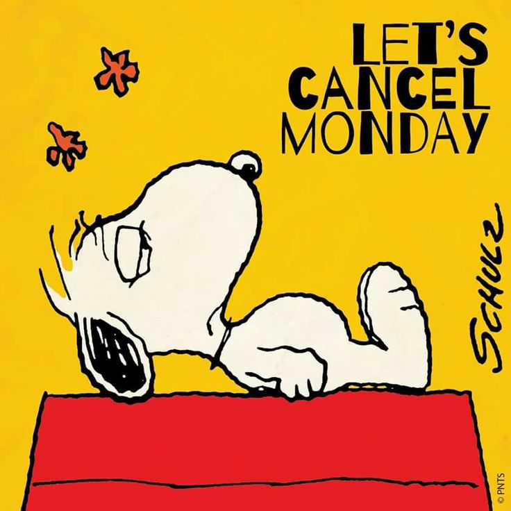 Poor Snoopy!