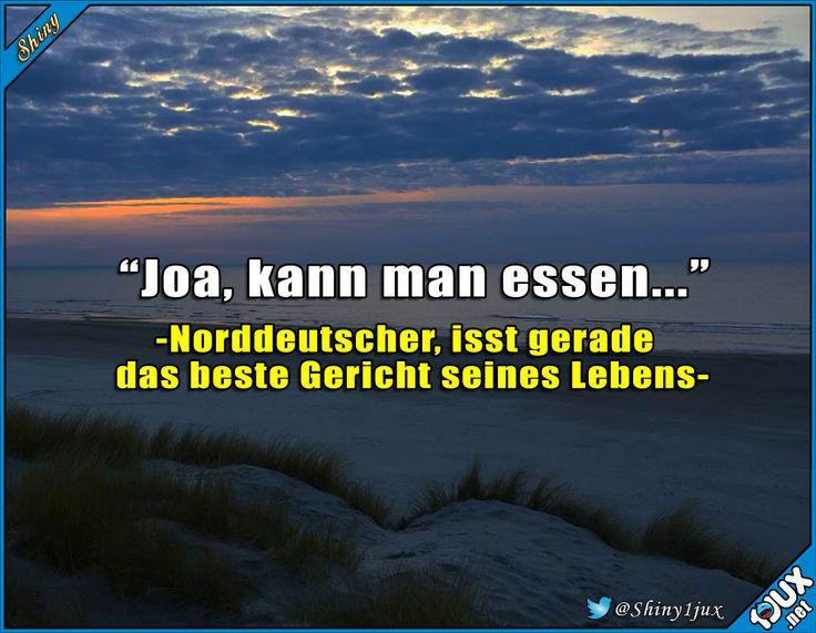 Das ist schon das größte Kompliment. :) #typisch #Deutsch #Norddeutsch #sowahr #lustig #Sprüche