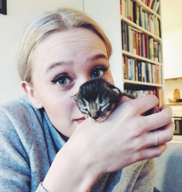 """7,599 Likes, 23 Comments - 🐝Kristina Ødegaard (@kristina.odegaard) on Instagram: """"Asså HALLO!!!🐱😻hvor søt er ikke Knut Ivar (og Josefine da)?!"""""""