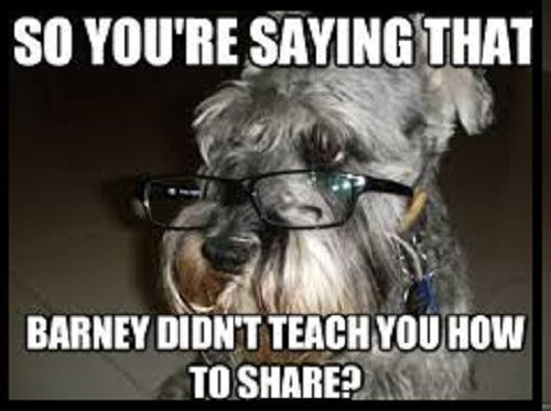 "2"" x 3"" Schnauzer Funny Meme Pet FRIDGE MAGNET Locker MAGNET in Collectibles, Kitchen & Home, Magnets   eBay"