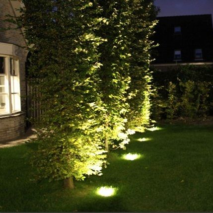 Using pot lights at the base of a tree or shrub creates a great glowing effect!