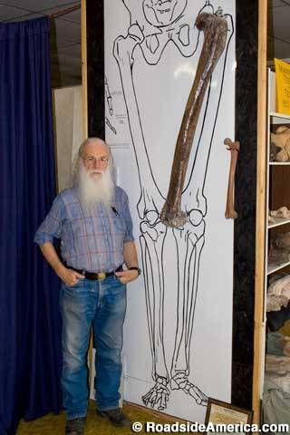 224 best ideas about giants on pinterest | giant skeleton, mound, Skeleton