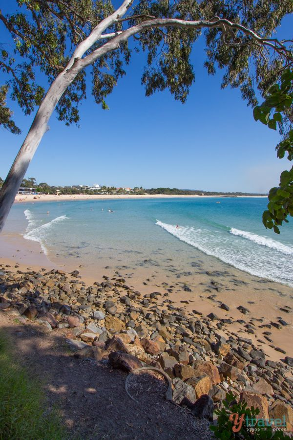 Noosa Beach, Sunshine Coast, Queensland, Australia