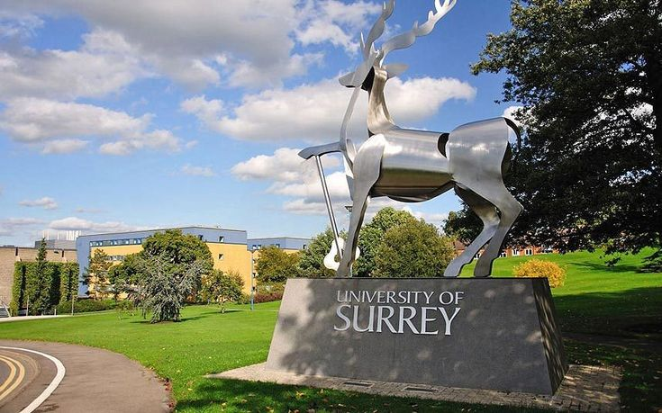 Percentage of firsts awarded: 31 Total number of undergraduate degrees: 2,450  Ranked in third place for the percentage of degrees that were awarded the top grade, the University of Surrey has enjoyed a top 10 place in many recent rankings. The Complete University Guide recently labelled the institution as tenth for graduate job prospects.
