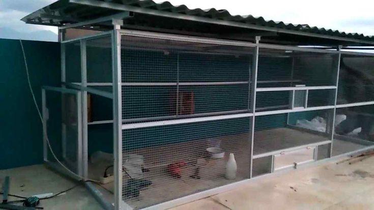 71 Contoh Desain Kandang Ayam Petelur Umbaran Menakjubkan ...