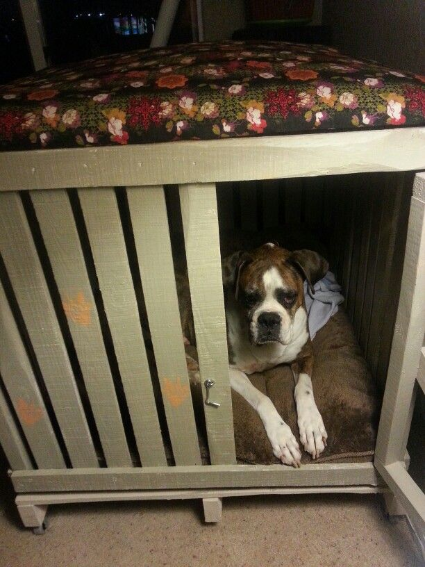14 besten indoor kennel Bilder auf Pinterest   Hundezwinger, Hunde ...