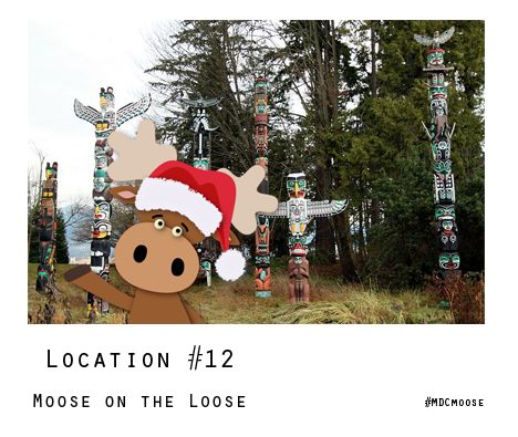 Only a few more days to enter the Moose on the Loose! Contest - visit facebook.com/muscle.ca for info on how to enter