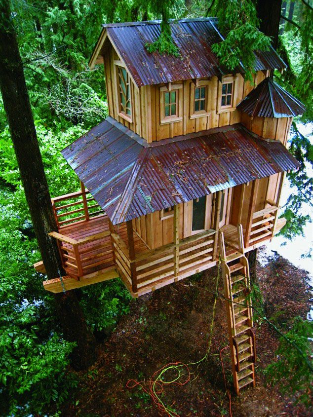 25 Amazing Tree House Plans around the world. Follow us www.pinterest.com/webneel/funny-pictures
