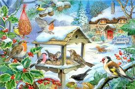 Afbeeldingsresultaat voor thema vogels in de winter