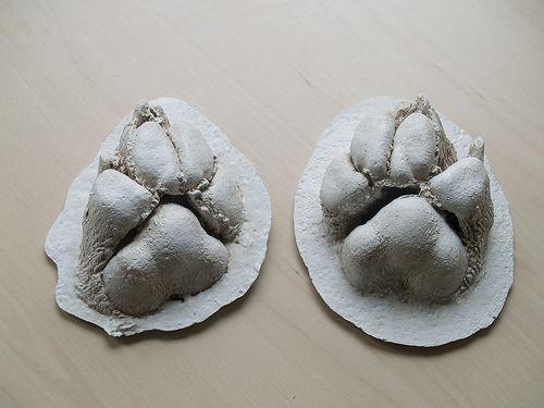 Animal Hair Plaster : Best pet memorial gifts ideas on pinterest dog