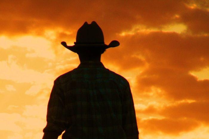 Australian stockman by night